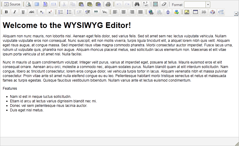 Introduction to the WYSIWYG Editor